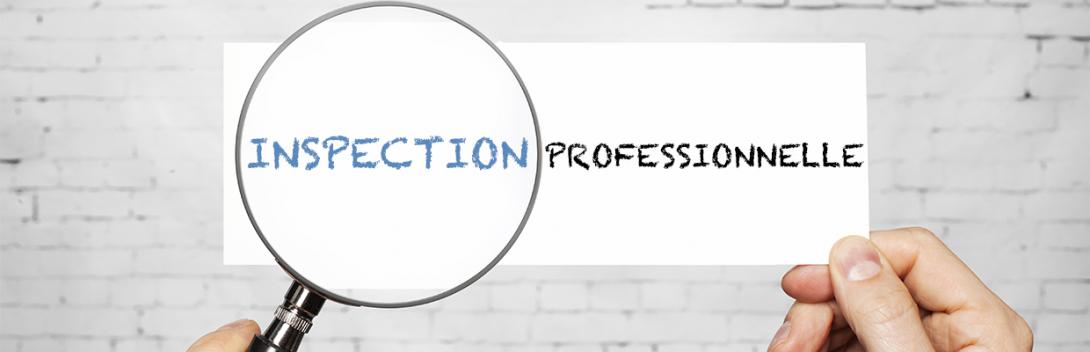 Inspection Prof Banniere Web